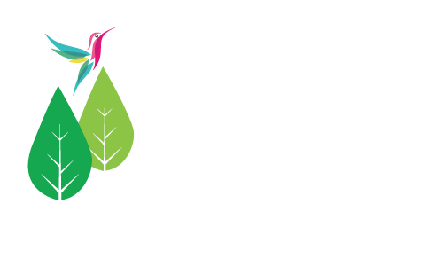 Bosques de San Jose
